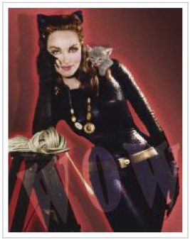 Perspectives on Catwoman Character by Charlyne Gelt